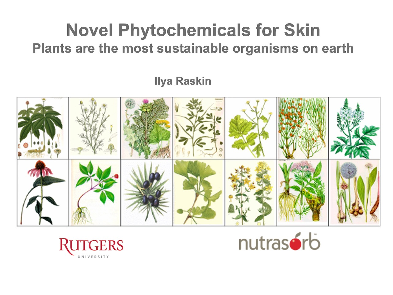Novel Phytochemicals for Skin